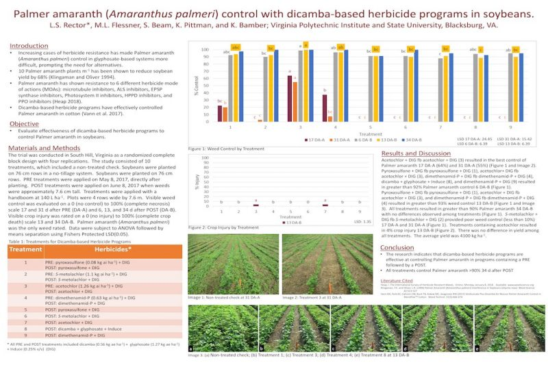 Poster presenting preliminary results on Palmer amaranth control from dicamba-based systems.